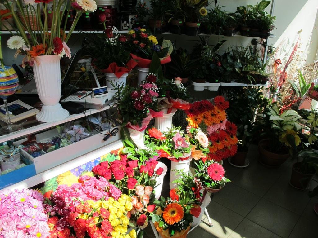 Програма за автоматизация на цветя, магазин, опаковане, магазин за цветя - Горна Оряховица